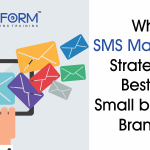 Why SMS Marketing Strategy is best for Small Business Brands?
